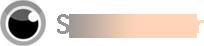 Logo SpyMsMsn.fr, solutions de surveillance informatique
